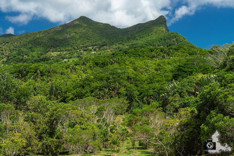 Natur auf Mauritius