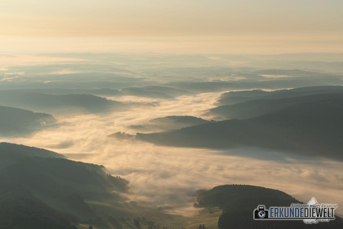 Ballonfahrt im Schwarzwald