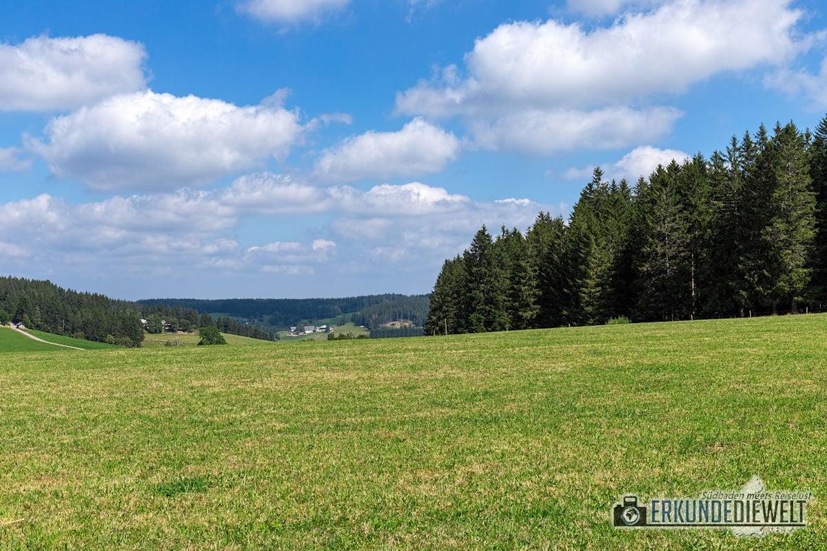 Heilklima-Steig, Schönwald, Schwarzwald