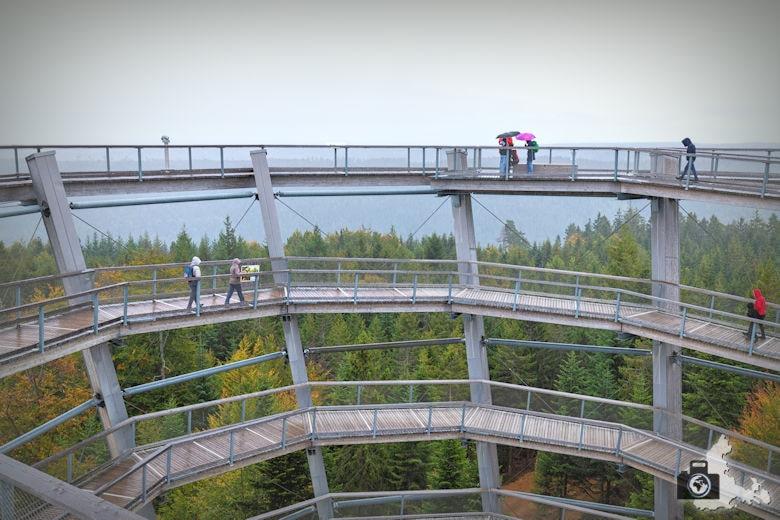Waldgipfelpfad Schwarzwald in Bad Wildbad - Aussichtsturm
