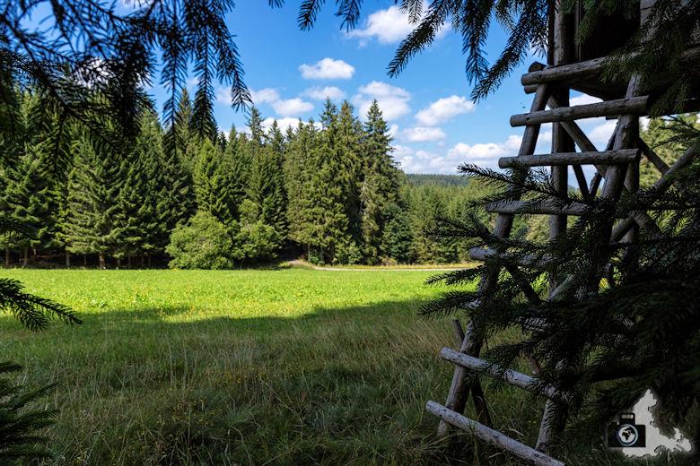Hochsitz, Schwarzwälder Genießerpfad Heilklima-Steig Schönwald