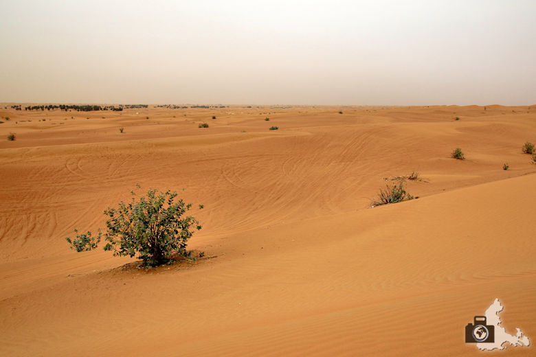 Tipps zum Schutz von Kamera und Fotoausrüstung bei Hitze und vor Sand in Wüsten