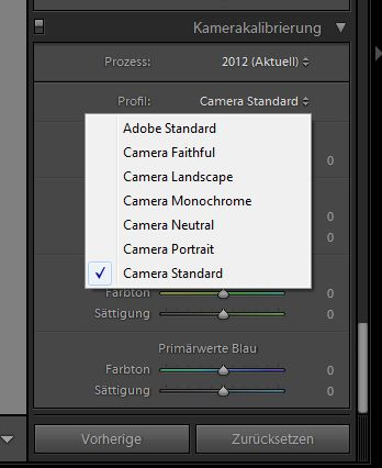 lightroom-tipp-raw-import