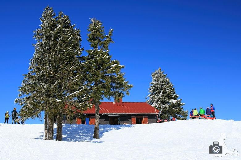 Schwarzwald im Winter – Aktivitäten, Tipps & Ausflugsideen
