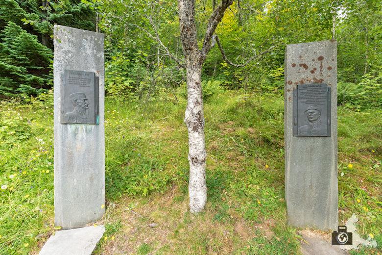Königsbirke Kongebjorka in Molde