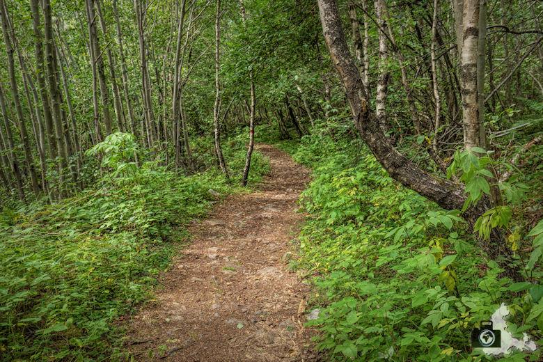 Vinnufossen Norwegen - Wanderweg