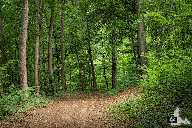 Wanderung Steinzeitpfad Ehrenkirchen - Rundwanderweg