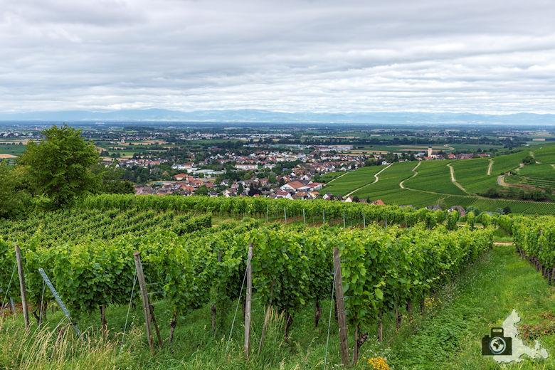 Wanderung Steinzeitpfad Ehrenkirchen - Reben