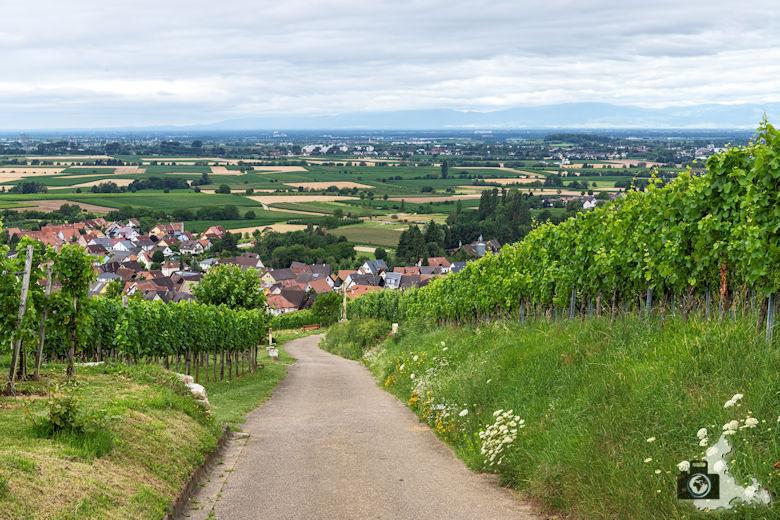 Wanderung Steinzeitpfad Ehrenkirchen - Blick auf Ehrenkirchen