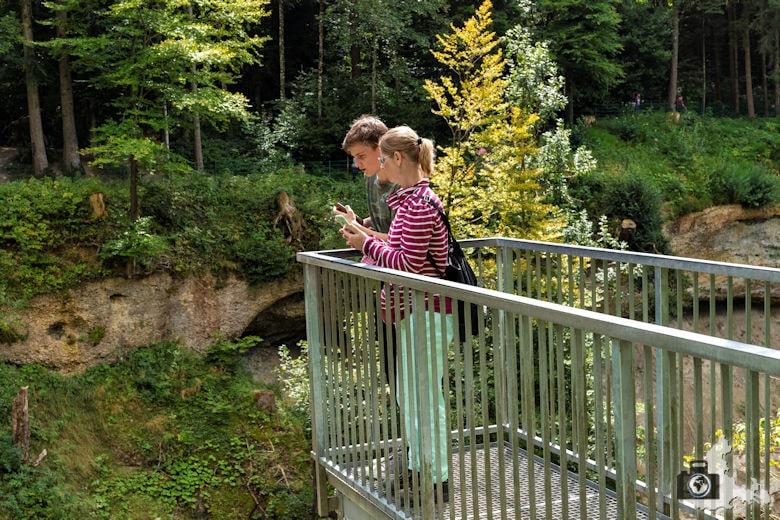 Scheidegg Wasserfälle