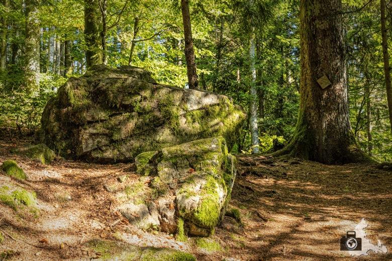 Schwarzwälder Genießerpfad - Lebküchlerweg