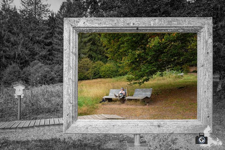 Schwarzwälder Genießerpfad - Lebküchlerweg - Rahmen