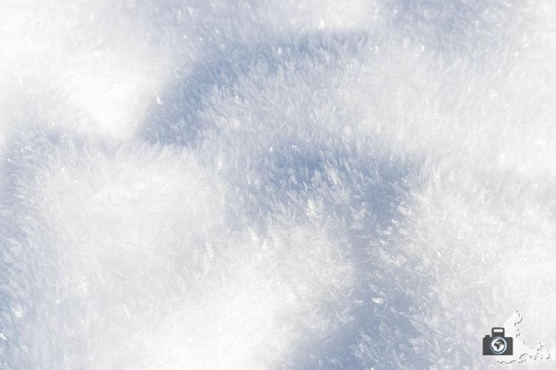 Fotowalk - Winterspaziergang im Münstertal - Schneekristalle