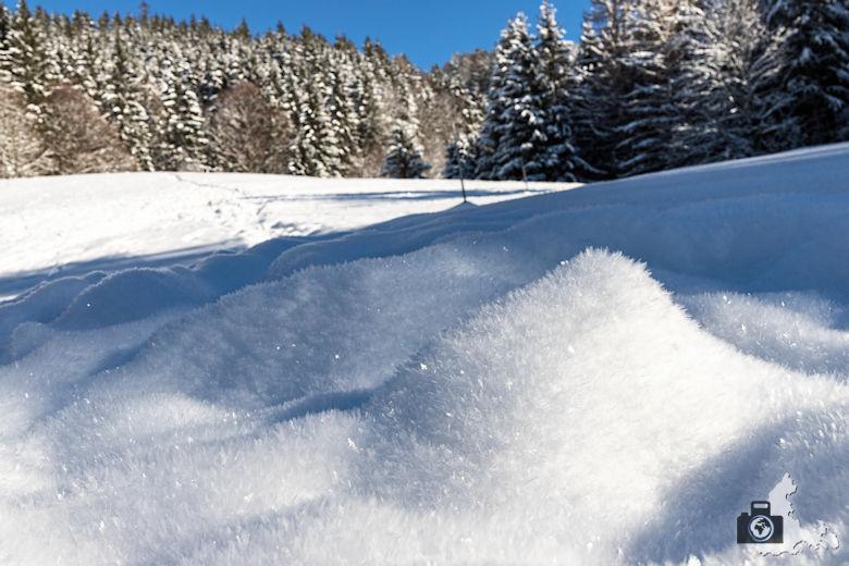 Fotowalk - Winterspaziergang im Münstertal - Schneeberg