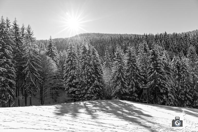 Fotowalk - Winterspaziergang im Münstertal - Gegenlicht