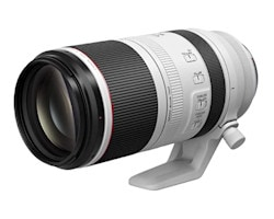 Canon RF 100-500 mm F4.5-7.1L IS USM