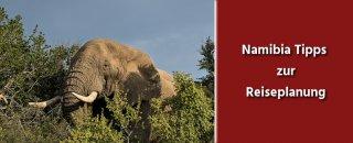Namibia Tipps zur Reisevorbereitung