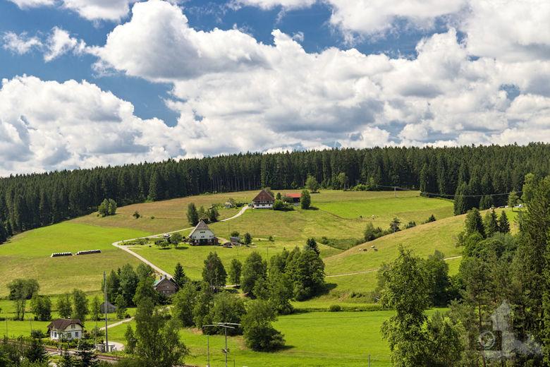 Schwarzwälder Genießerpfad - Waldpfad Groppertal - Ausblick