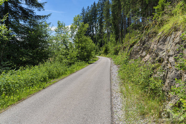 Schwarzwälder Genießerpfad - Waldpfad Groppertal - Straße