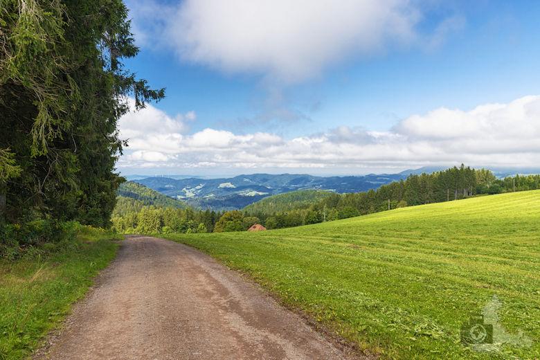 Wanderung auf dem Breitnauer Roßberg Rundweg